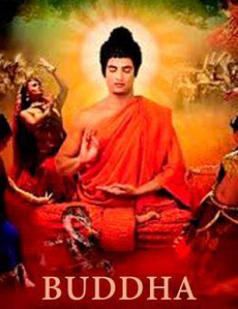 Сериал Будда